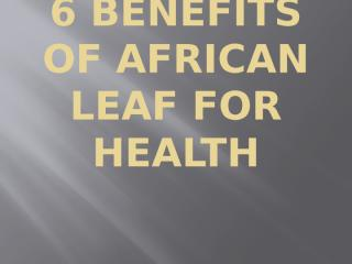 6 Benefits of African Leaf for Health(ppt).pptx